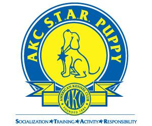 Car-Dun-Al Training - AK STAR Puppy